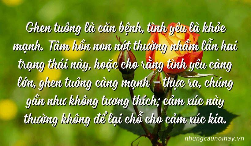 tong hop nhung cau noi hay ve su ghen tuong trong tinh yeu noi tieng nhat 6 - Tổng hợp những câu nói hay về sự ghen tuông trong tình yêu nổi tiếng nhất